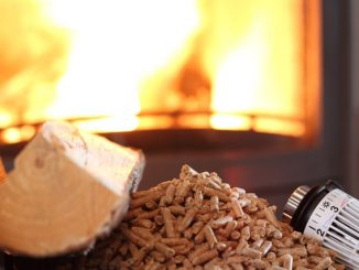 Biomasseheizung Förderung