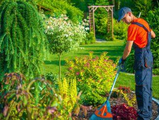 Garten Planung Tipps