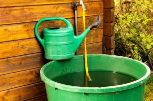 Garten Wasser sparen