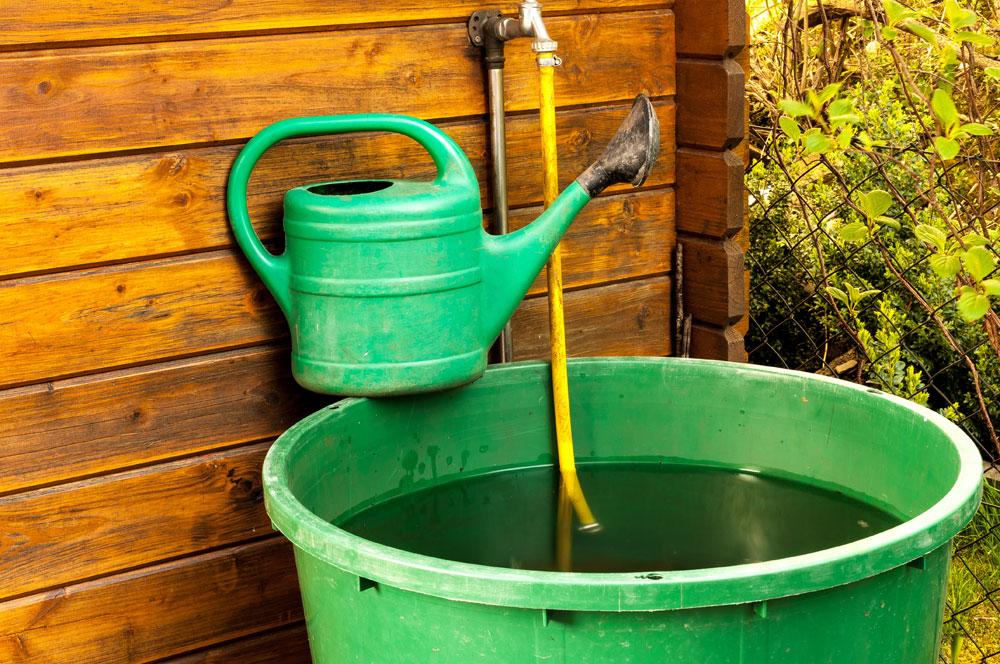 Im Garten Wasser sparen - 8 Tipps - Haushaltsgeld.net