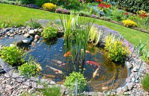 Günstig Zum Gartenteich Tipps Und Anleitung Für Den Teichbau