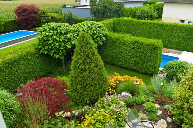 Sichtschutz Fur Den Garten Selbst Bauen Haushaltsgeld Net