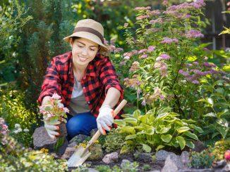 Sparen im Garten
