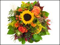 Blumen Online Bestellen Und Verschicken Im Test Haushaltsgeldnet
