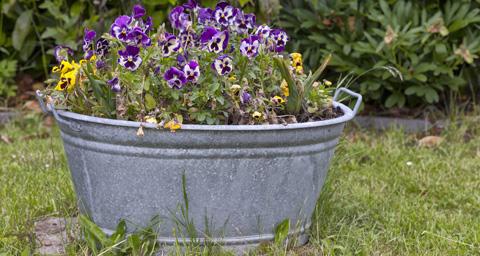 günstige gartendeko selber machen - 5 möglichkeiten für sie ... - Gartendeko Selber Bauen